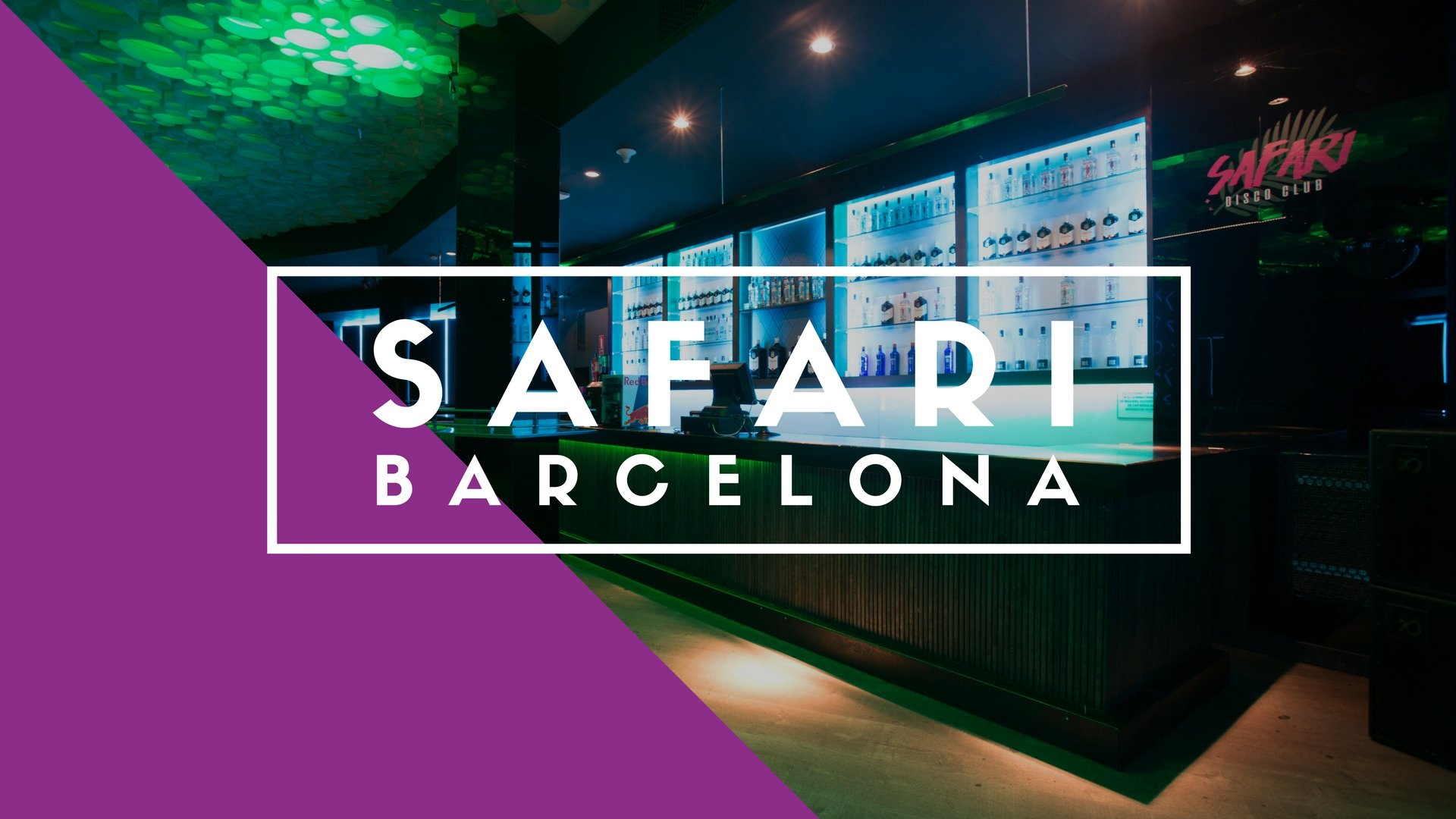 Safari Disco Club, Barcelona
