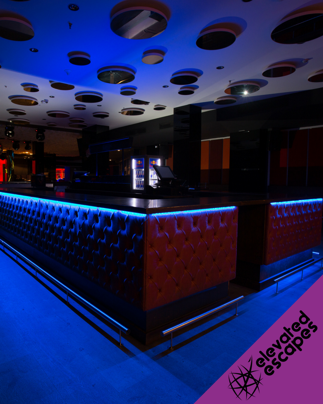 Safari Disco Club Modern